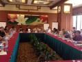全国电镀行业各地方协会理事长秘书长联席会在上海召开 (1)